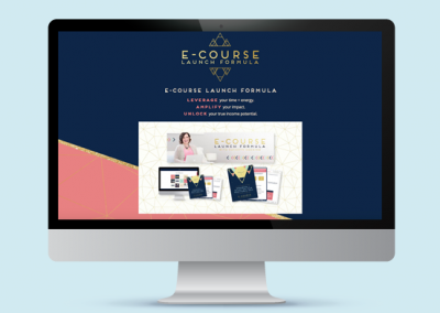 e-Course Launch Formula