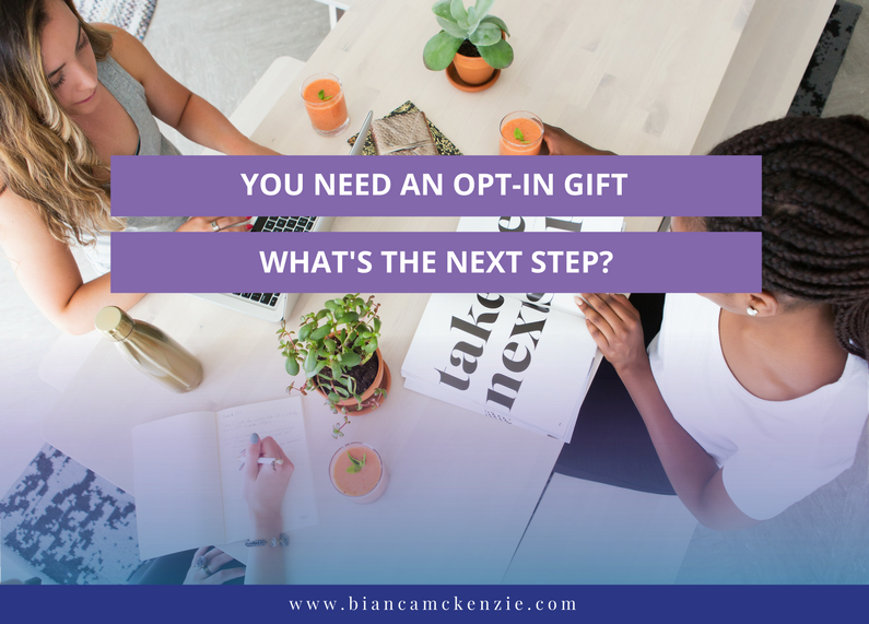 You need an opt-in gift, what's the next step?